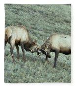 Battling Elk Fleece Blanket