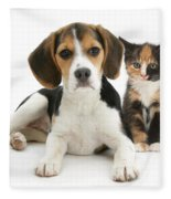 Beagle And Calico Cat Fleece Blanket