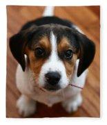 Beagle Fleece Blanket