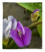 Beaked Butterfly Pea 9 Fleece Blanket