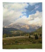 Bear Country Fleece Blanket
