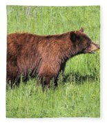 Bear Eating Daisies Fleece Blanket