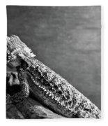 Bearded Dragon Fleece Blanket