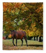 Beautiful Bay Horse In Fall Fleece Blanket