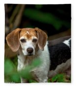 beautiful Beagle Fleece Blanket