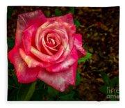 Beautiful Bicolor Rose Fleece Blanket