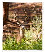Beautiful Buck Deer In The Pike National Forest Fleece Blanket