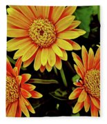 Beautiful Daisies Fleece Blanket