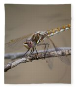 Beautiful Dragonfly Fleece Blanket