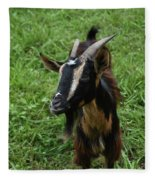 Beautiful Face Of A Billy Goat With Tan And Black Silky Fur Fleece Blanket