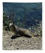 Beautiful Ground Squirrel Standing At The Edge Of The Coast Fleece Blanket