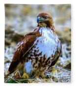 Beautiful Hawk Fleece Blanket
