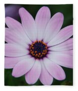 Beautiful In Pink Today Fleece Blanket