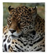 Beautiful Jaguar Portrait Fleece Blanket