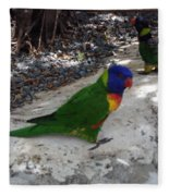 Beautiful Lorikeets Fleece Blanket