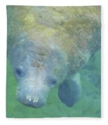 Beautiful Manatee Fleece Blanket
