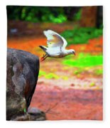 Beautiful Moment With A Bird Take Off , Wall Frame, Art Fleece Blanket
