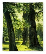 Beautiful Oak Trees Reach To The Skies Fleece Blanket