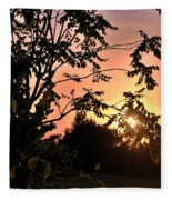 Beautiful Park Sunset View Trees Fleece Blanket