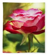 Beautiful Pink Rose Blooming In Garden Fleece Blanket