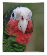 Beautiful Ruffled Green Feathers On A Conure Fleece Blanket