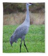 Beautiful Sandhill Crane Fleece Blanket