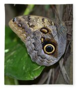 Beautiful Shot Of A Brown Morpho Butterfly Resting  Fleece Blanket