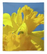 Beautiful Spring Daffodil Bouquet Flowers Blue Sky Art Prints Baslee Troutman Fleece Blanket