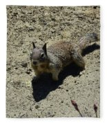 Beautiful Squirrel Standing In A Sandy Area In California Fleece Blanket