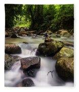 Beautiful Stream In Western Ghats Region Of Karnataka India Fleece Blanket