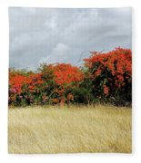 Beauty Of Bougainvillea Fleece Blanket