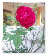 Beauty Of  Red Rose  Fleece Blanket