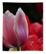 Beauty Of Spring Tulips 1 Fleece Blanket