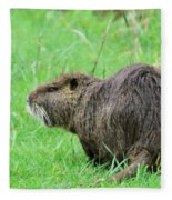 Beaver With Whiskers Fleece Blanket