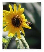 Bee Flying To Bright Lemon Yellow Wild Sunflower In High California Sun Fleece Blanket