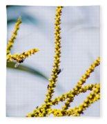 Bee On A Branch I Fleece Blanket