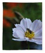 Bee On Daisy Fleece Blanket