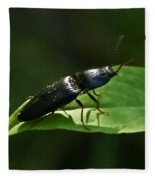 Beetle At Sunrise Fleece Blanket