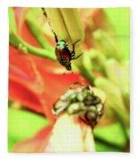 Beetles Fleece Blanket