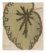 Begonia Marshallii  Fleece Blanket