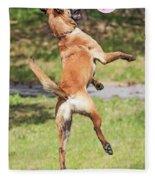Belgian Shepherd Dog Fleece Blanket
