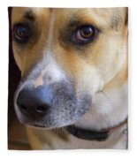 Bella Fleece Blanket