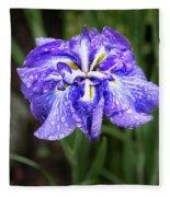 Bellevue Botanical Garden Iris 6402 Fleece Blanket