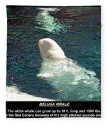 Beluga Whale Poster Fleece Blanket