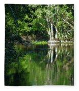 Bend Of The Ocklawaha River Fleece Blanket