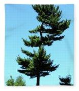 Beneath This Tree Lies Robert Edwin Peary Fleece Blanket