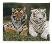 Bengal Tiger Team Fleece Blanket