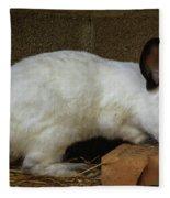 Benny Bunny Fleece Blanket