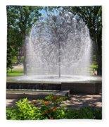 Berger Fountain2 Fleece Blanket