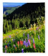 Berkeley Park Fleece Blanket